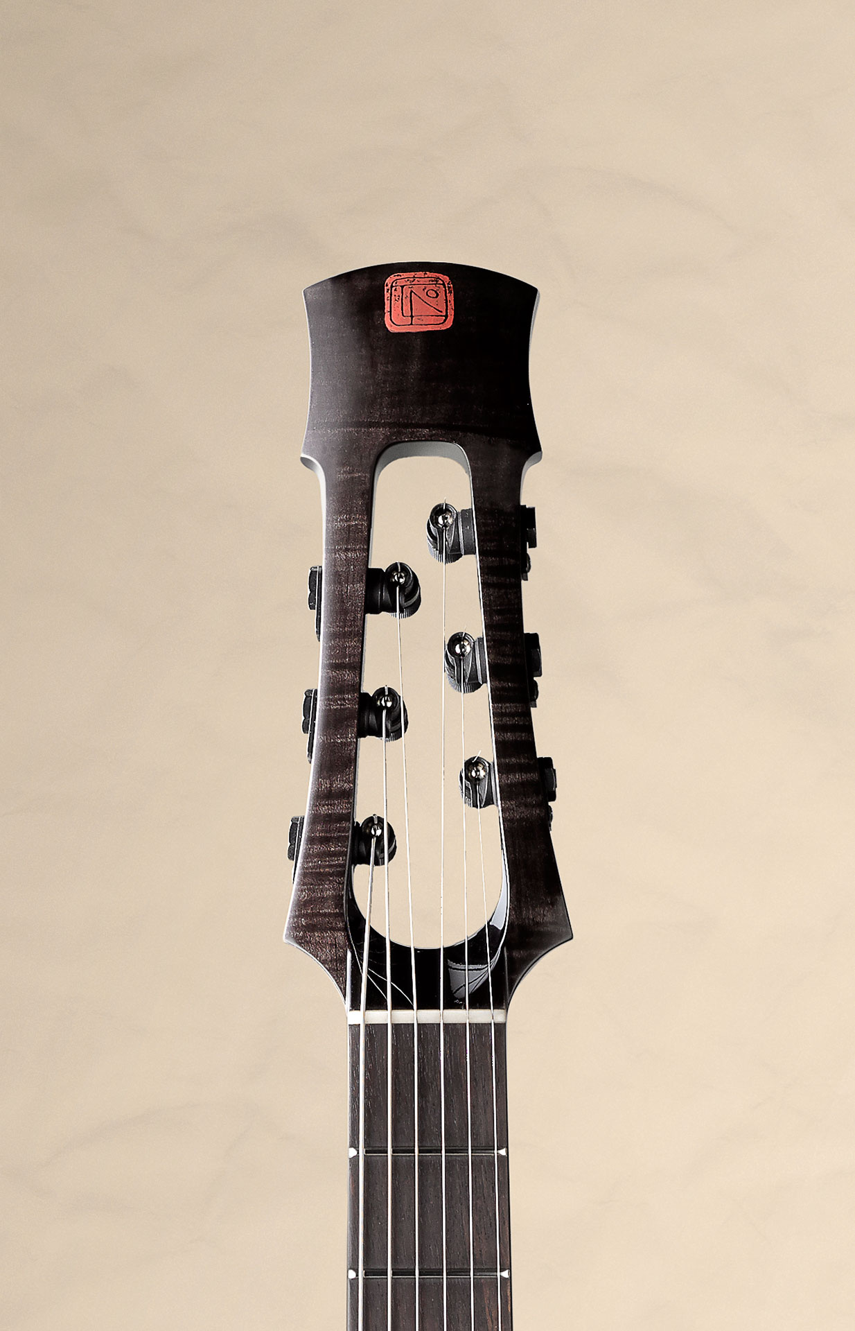 tao guitars tao guitar the gear page. Black Bedroom Furniture Sets. Home Design Ideas